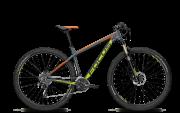 "Гірський велосипед FOCUS WHISTLER PRO 29"""